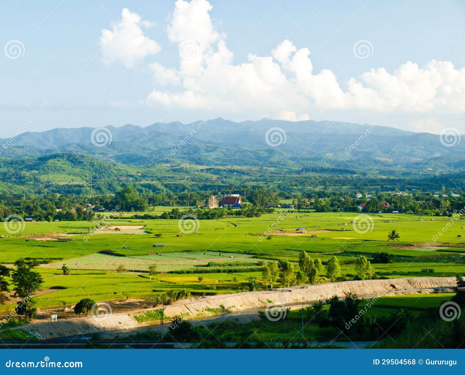 Het gebied van de padie en moutain het reservoir van meningsMae Suay, rai Chiang