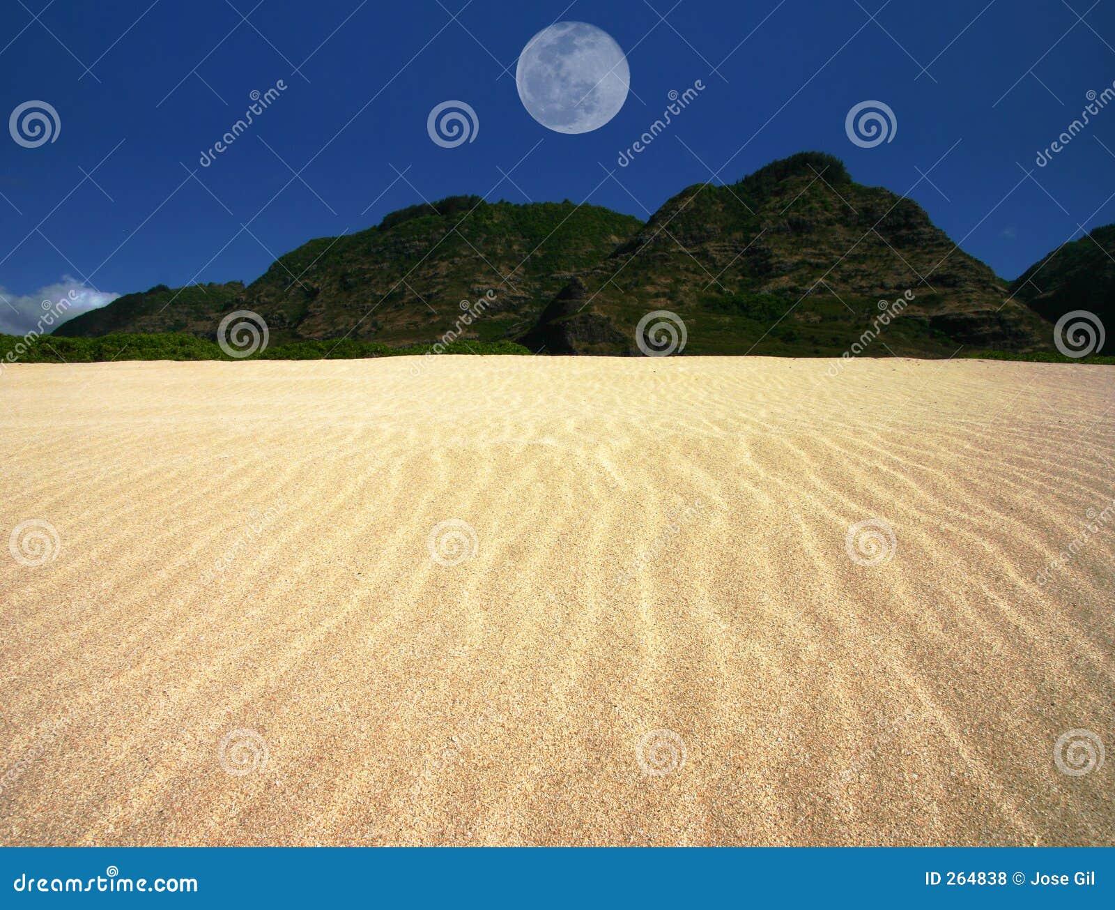 Het gegolfte Landschap van het Zand met Gecentreerde Maan