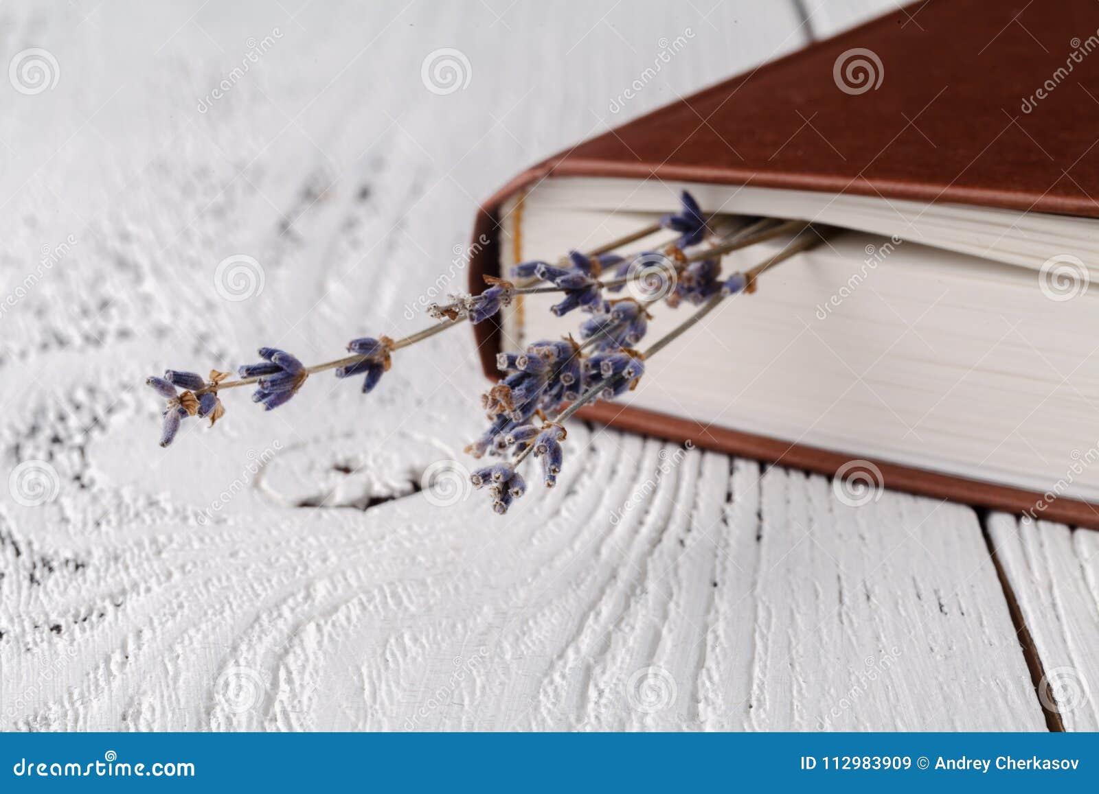 Het het geheugen van ` s, een boeket van droge lavendel en boeken