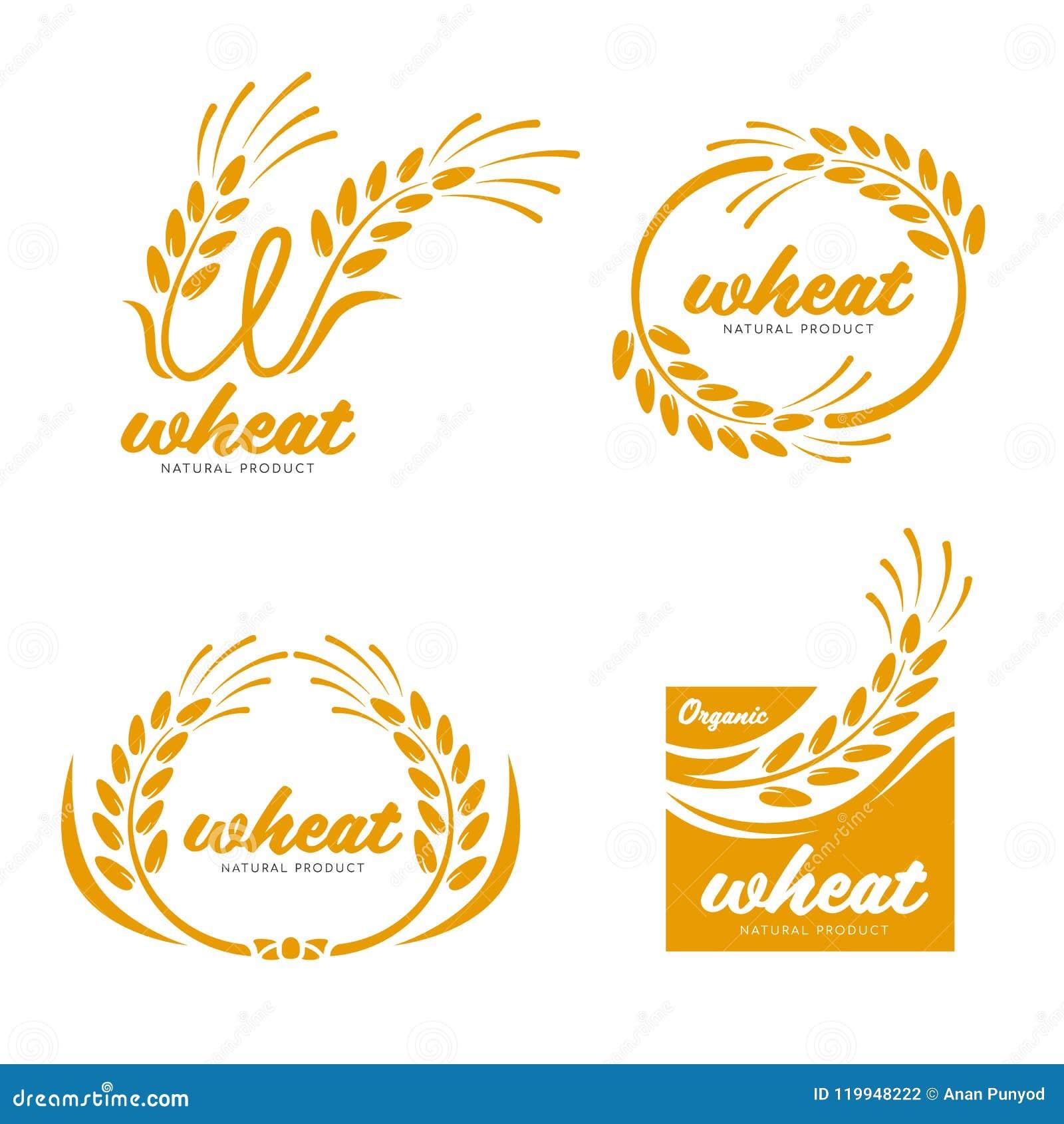 Het gele Paddy Wheat-van het de productenvoedsel van de rijstkorrel van het de bannerteken ontwerp van de het embleem vectorkunst