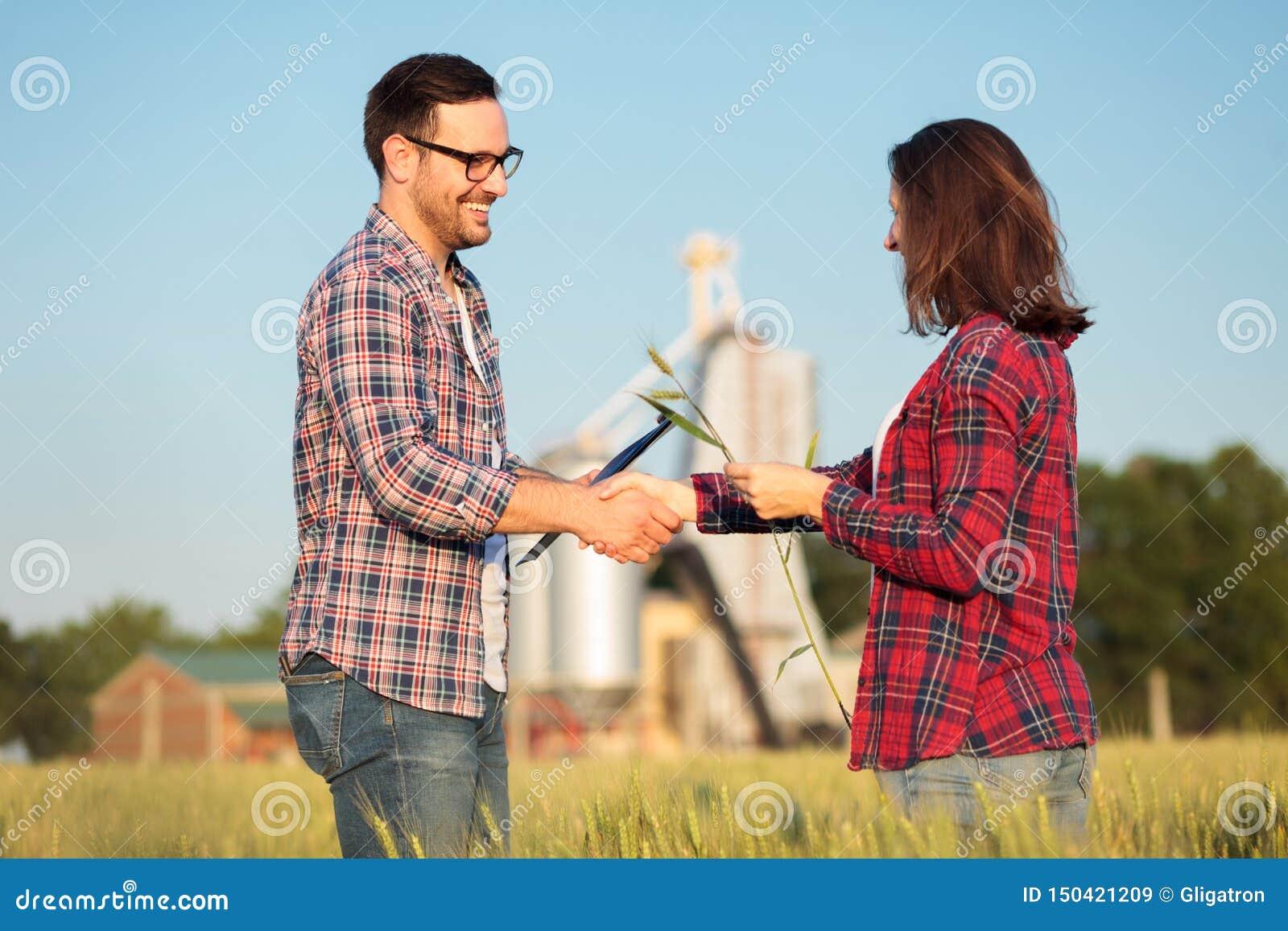 Het glimlachen van gelukkige jonge mannelijke en vrouwelijke landbouwers of agronomen het schudden dient een tarwegebied in Het i