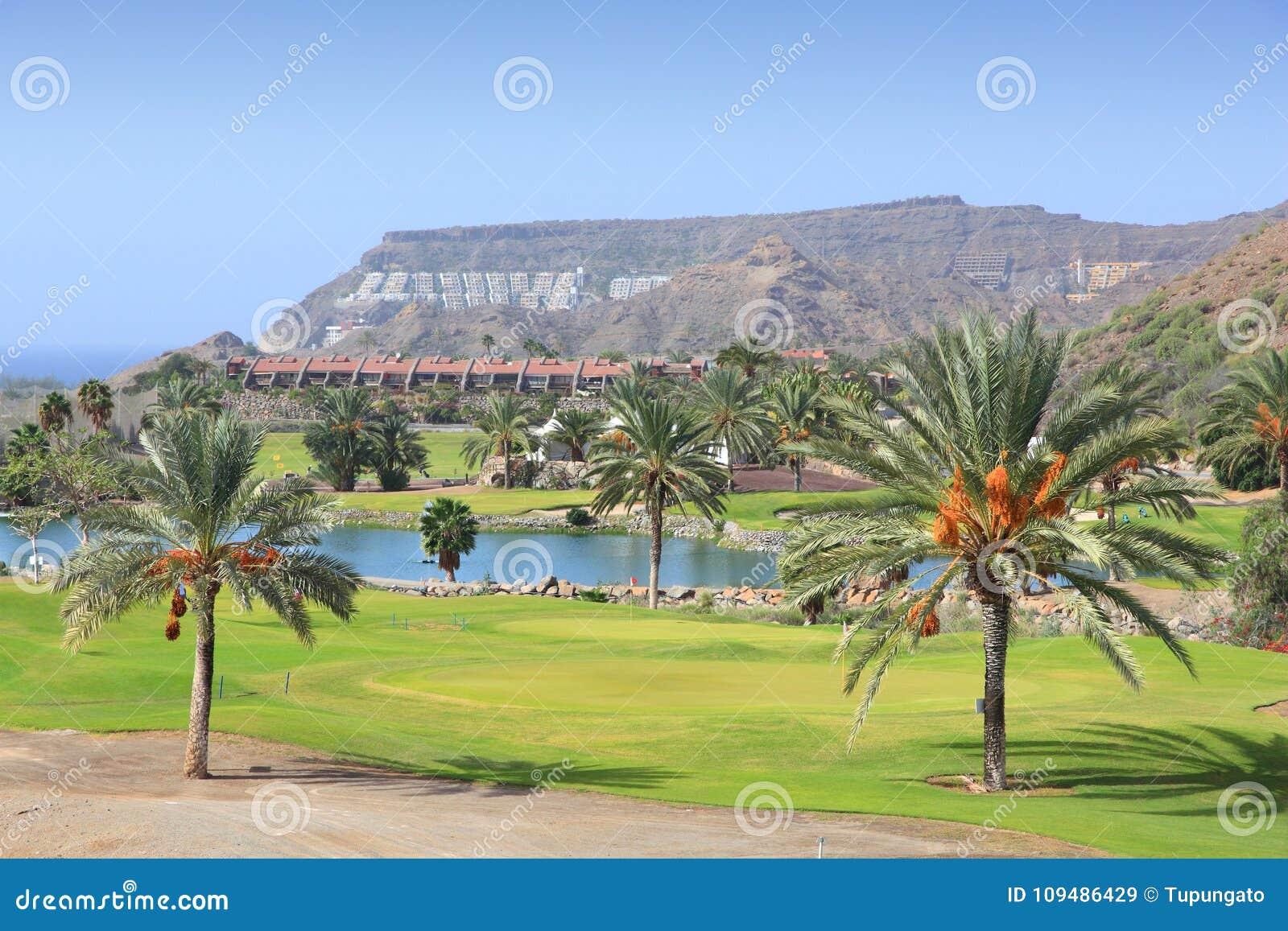 Het golf van Gran Canaria