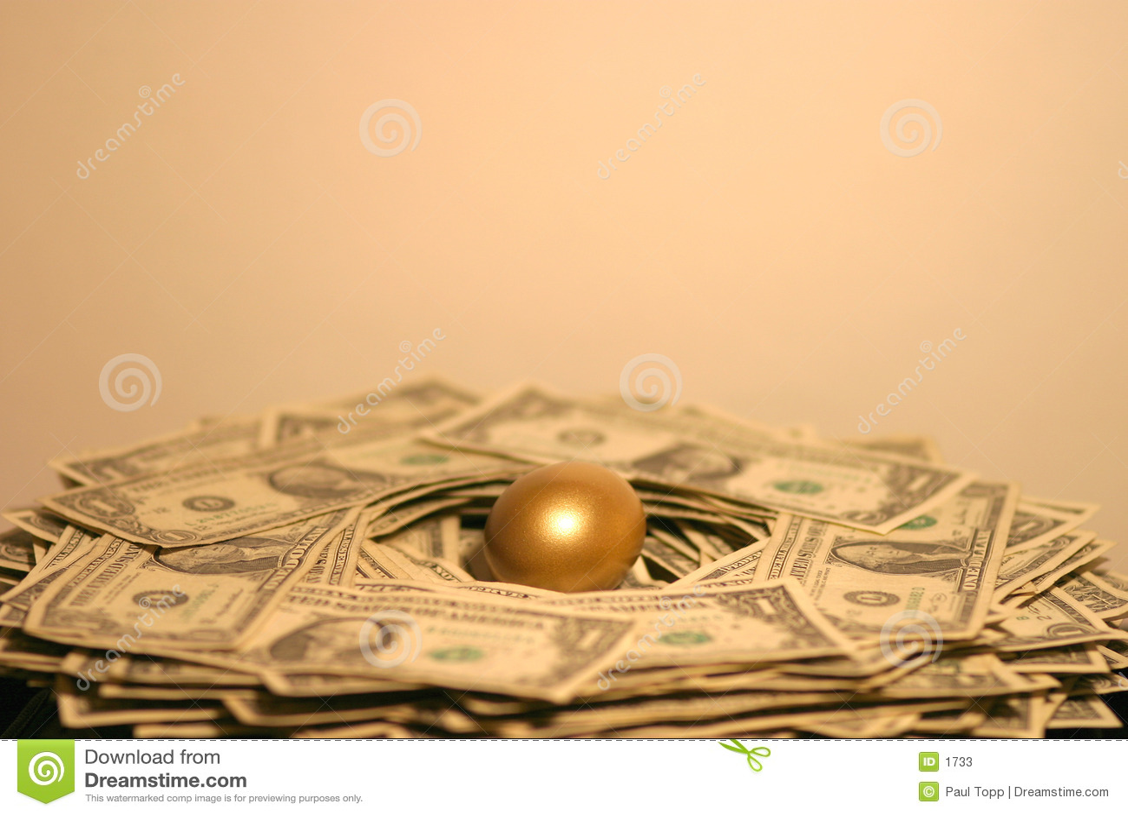 Het gouden Ei van het Nest