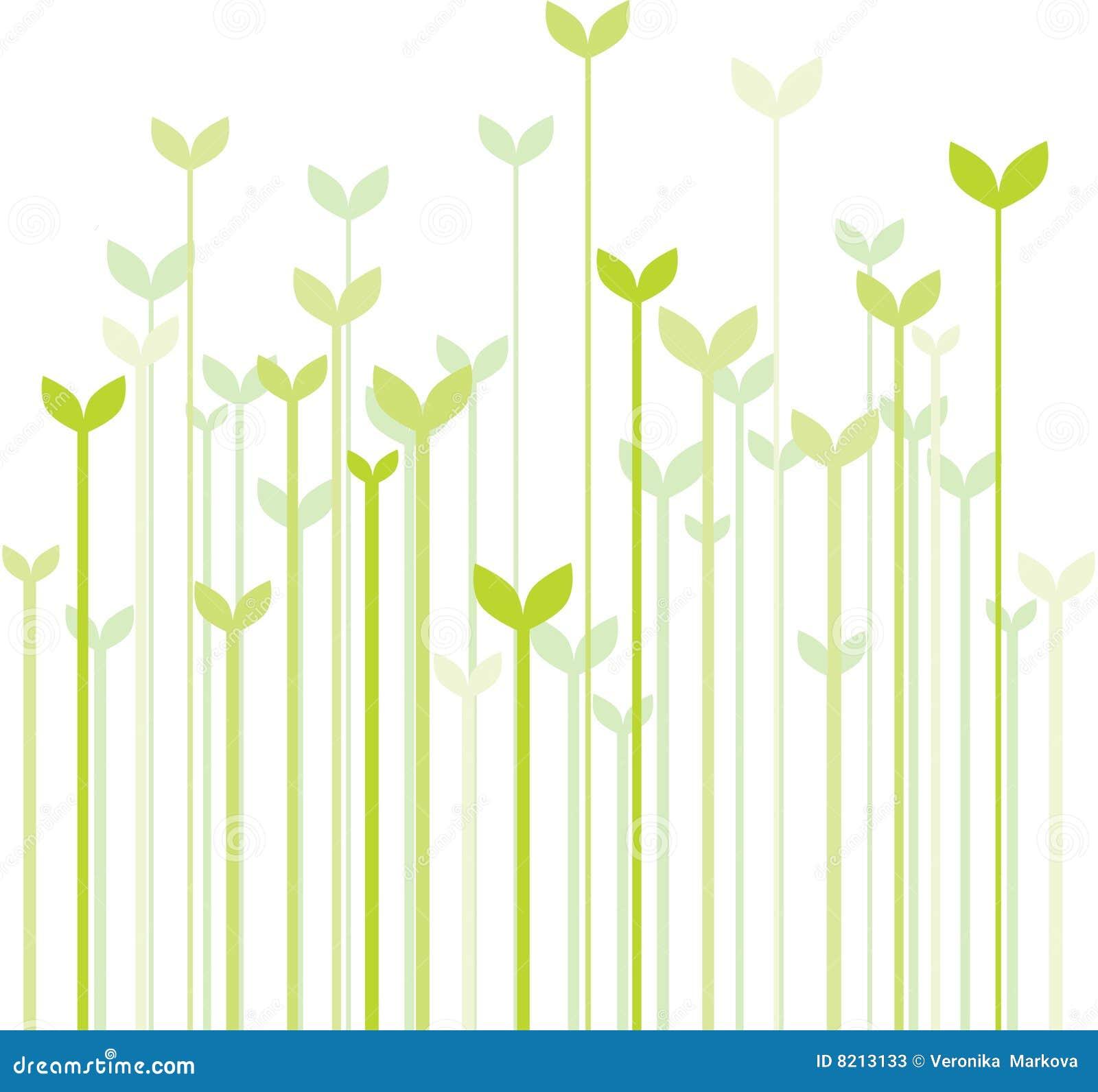 Het Gras Van De Lente Stock Foto u0026#39;s   Afbeelding  8213133