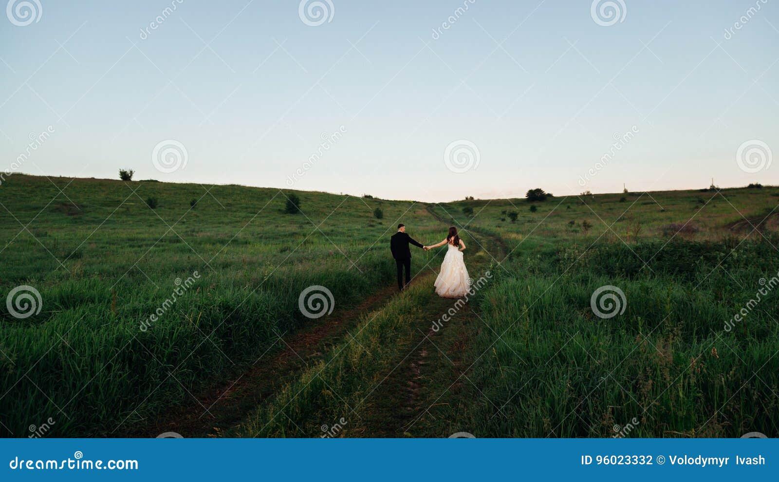 Het groene gras omringt newlwyeds hand in hand het lopen