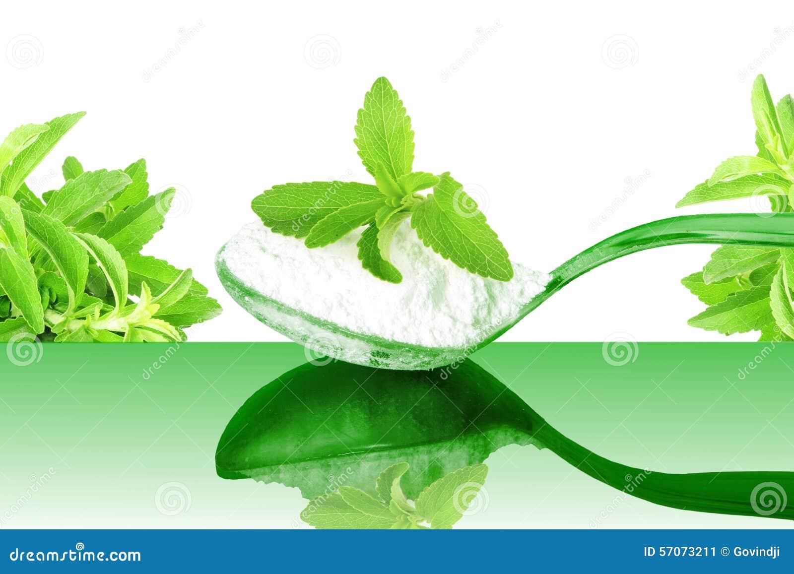 Het groene poeder van Stevia en van het uittreksel in lepel op witte achtergrond