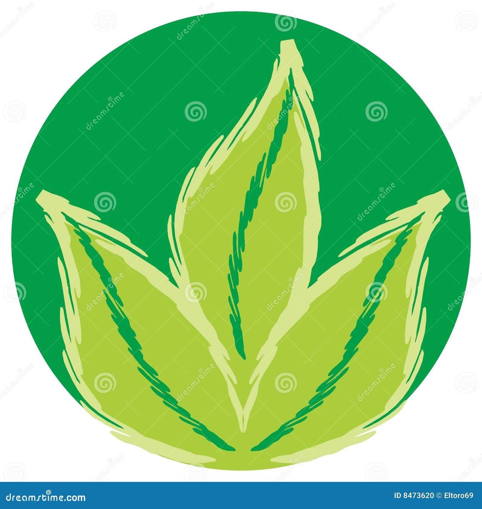 Het groene Symbool van Bladeren