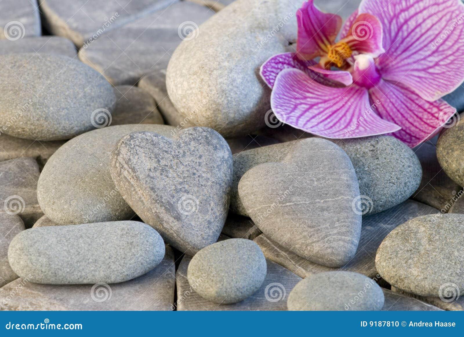 Citaten Hart Van Steen : Het hart en de orchidee van steen stock foto