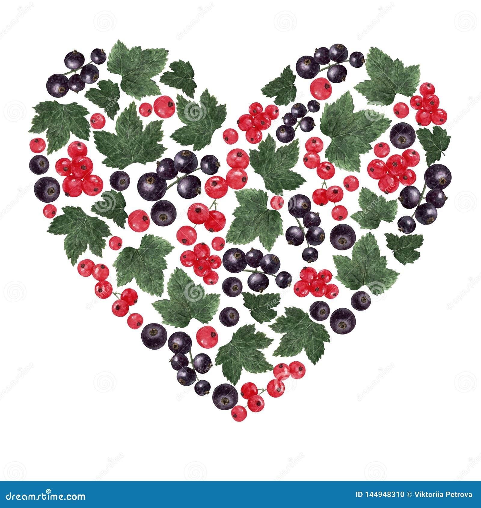 Het hart gaf vorm gestalte met rode en zwarte besbessen en bladeren dat wordt gevuld