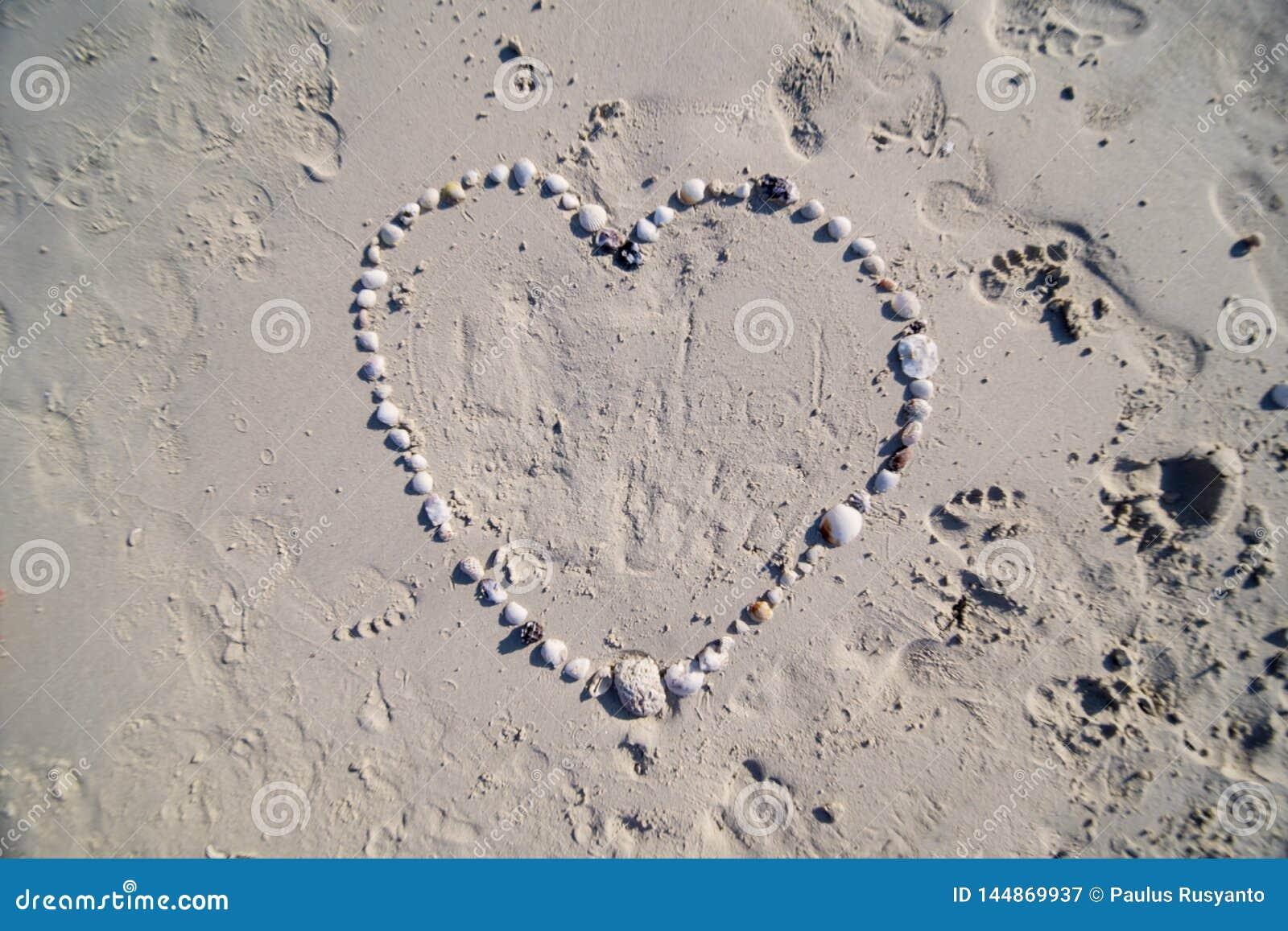 Het hartsymbool van zeeschelpenvormen op het zandige strand