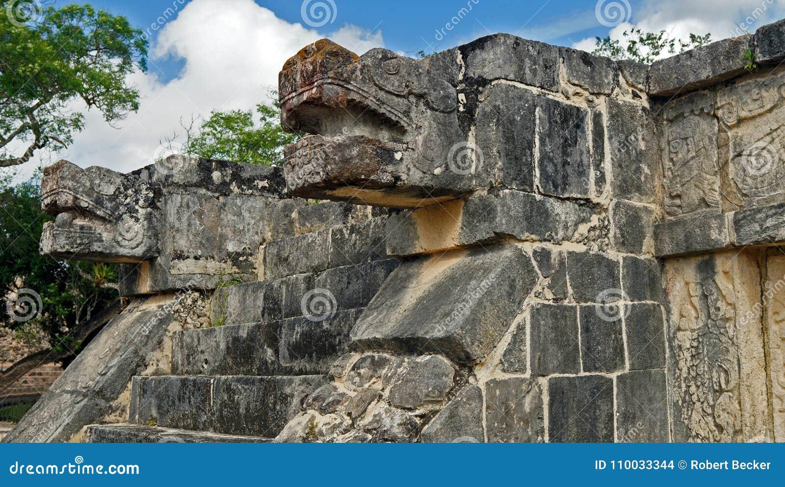 Het hoofd van de slangsteen in de wildernis van Yucatan