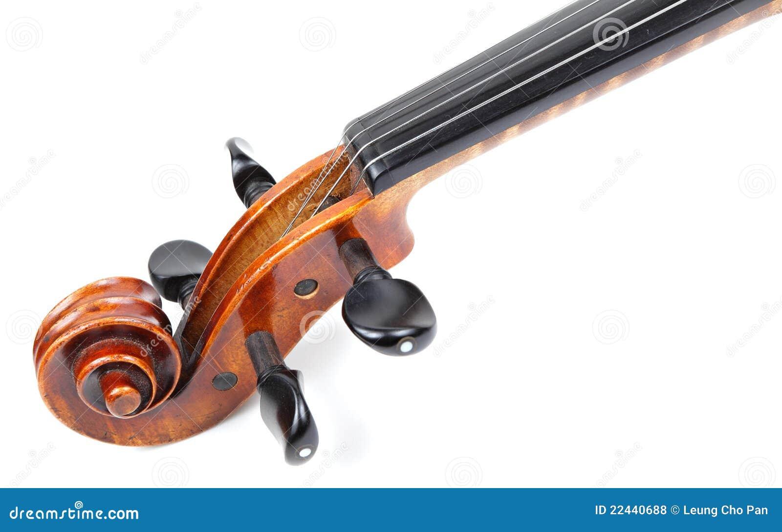 Het hoofd van de viool