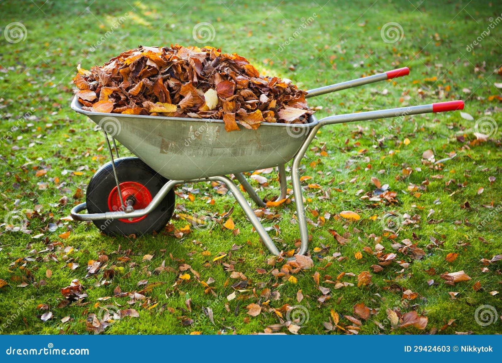Het hoogtepunt van de kruiwagen van droge bladeren stock afbeelding afbeelding 29424603 - Foto droge tuin ...