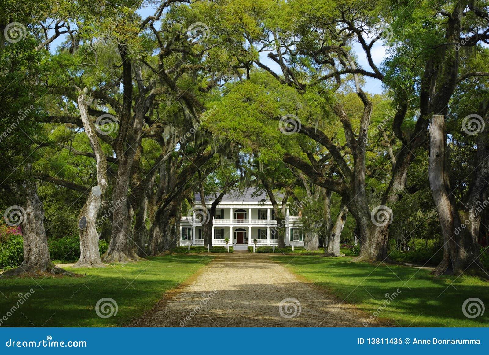 Het Huis van de Aanplanting van Rosedown