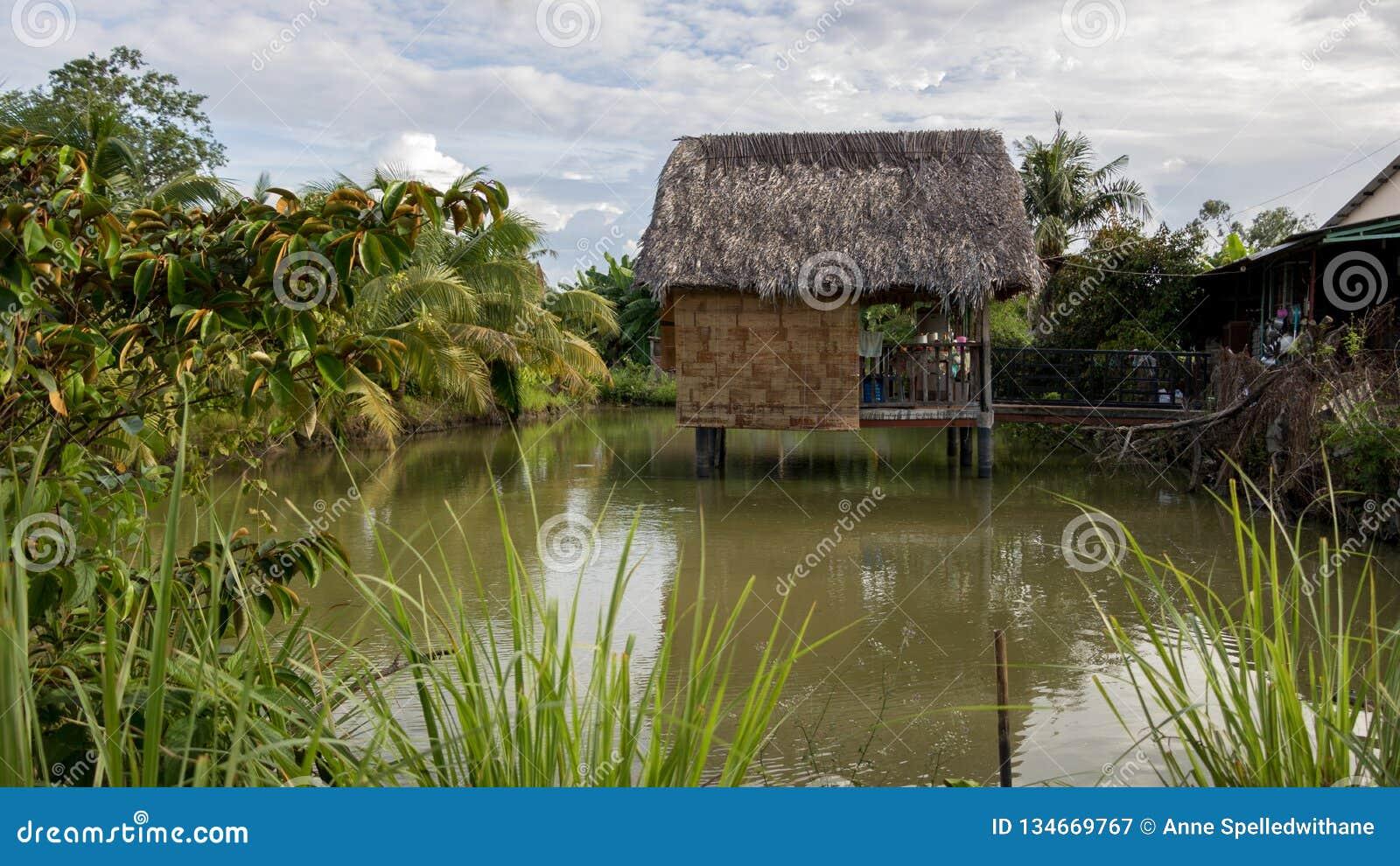 Het Huis van de Vietnamees-stijlboom op Mooie Groene Vijver met Kokospalmen en Tropische Installaties - Sunny Day met Wolken