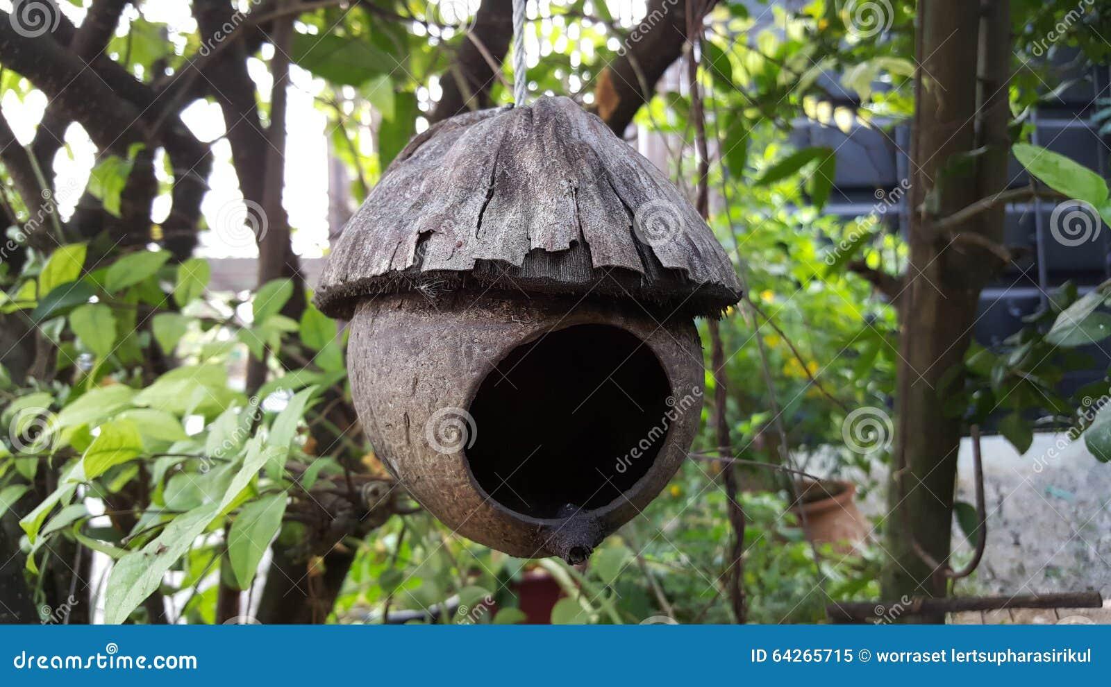 Het huis van de vogel stock afbeelding afbeelding bestaande uit vogels 64265715 - Huis van het wereldkantoor newport ...