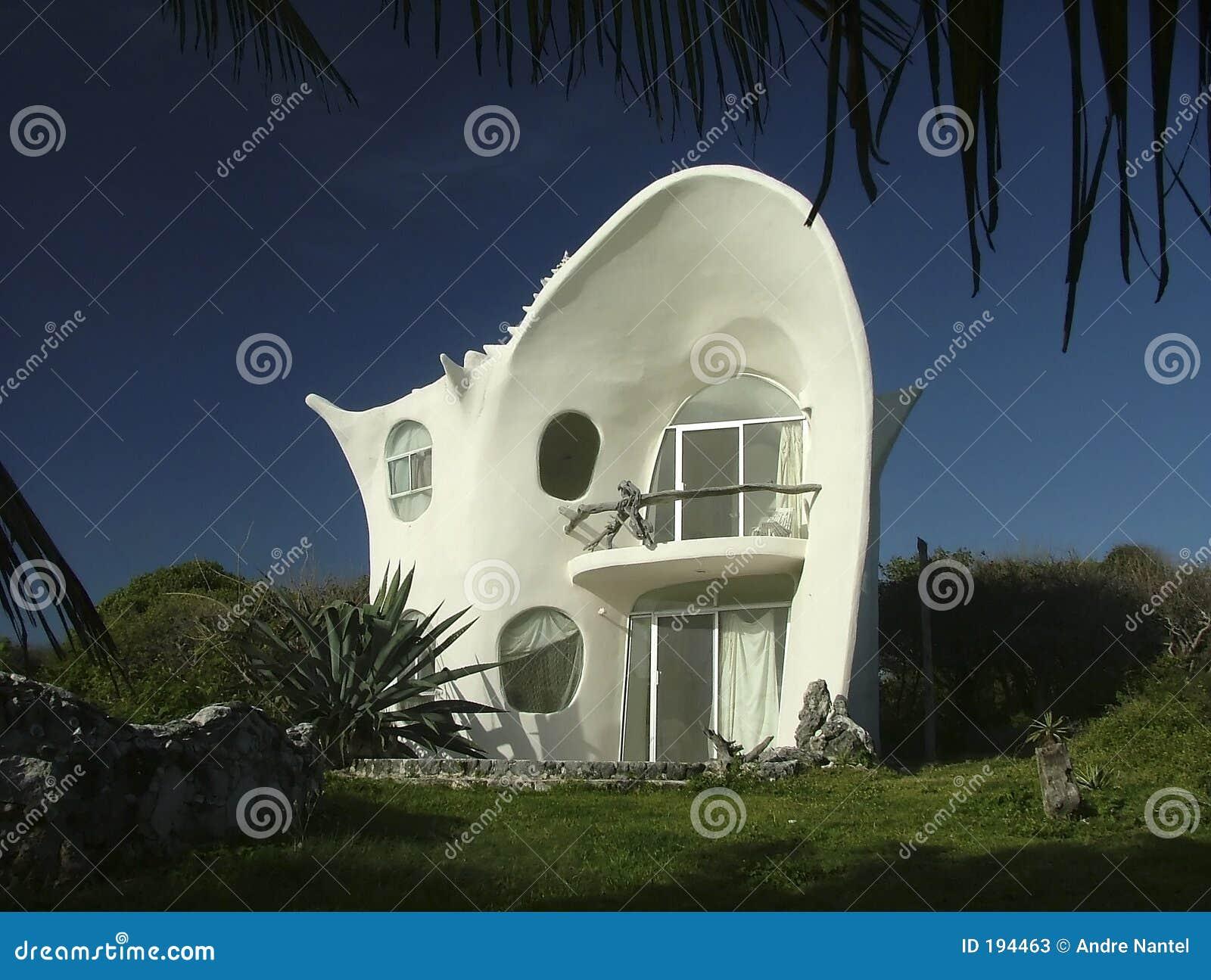 Het huis van de zeeschelp