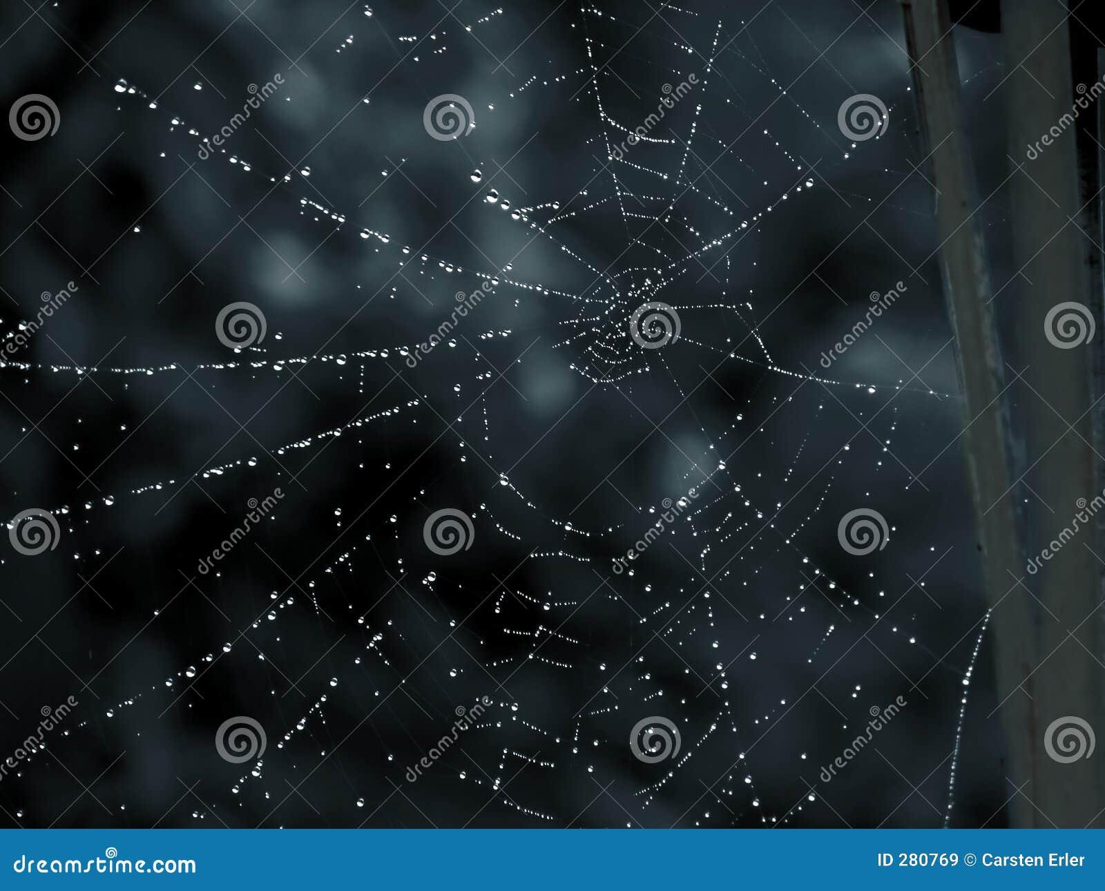 Het Huis van Spiderman