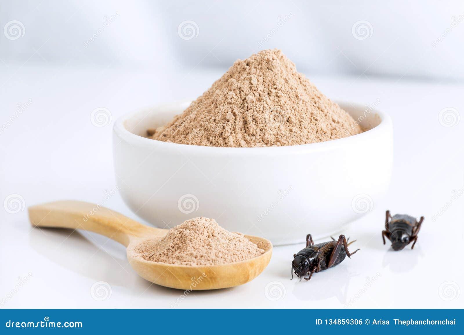 Het insect van het veenmolpoeder voor het eten als voedselpunten van gekookt insectvlees worden gemaakt in kom en houten lepel op