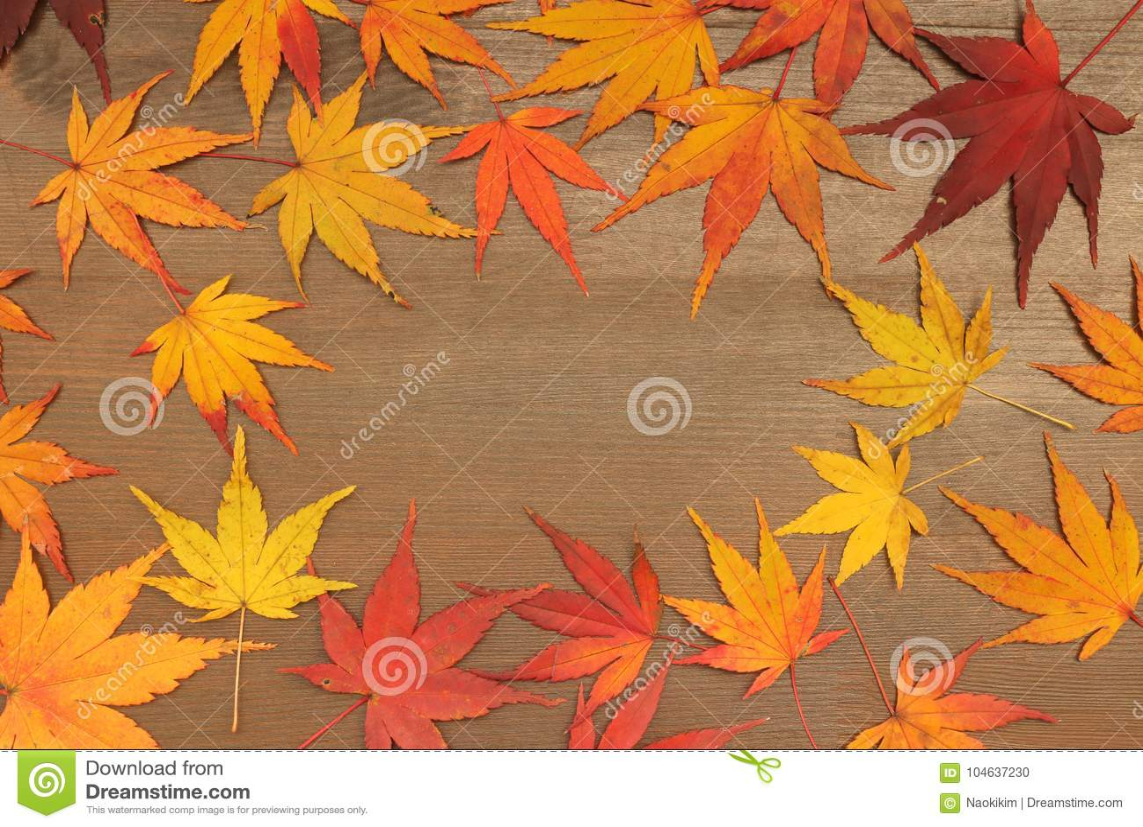 Download Het Japanse Blad Van De De Herfstesdoorn Op Bruine Houten Achtergrond Stock Foto - Afbeelding bestaande uit kleurrijk, close: 104637230