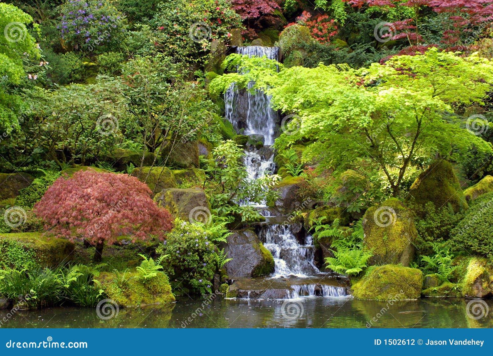 Het Japanse Landschap Van De Waterval Van Tuinen Stock