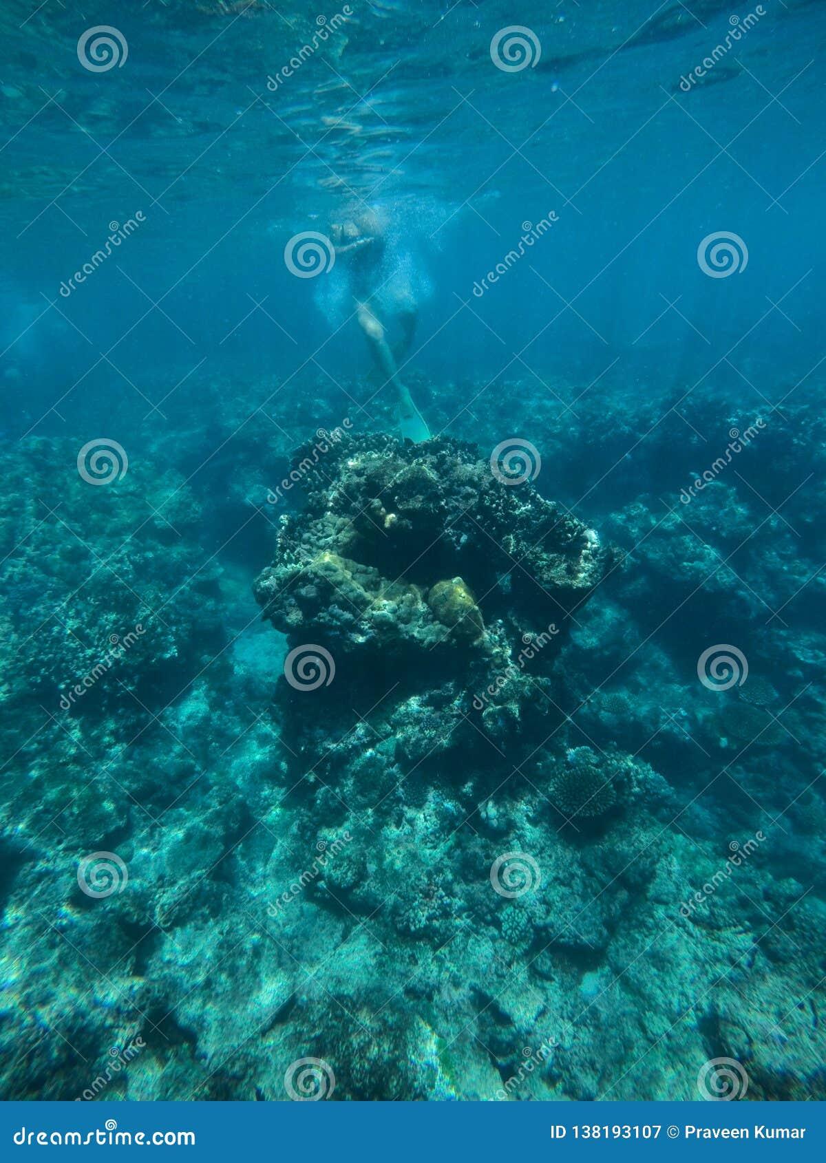 Het jonge dame onderwater snorkelen