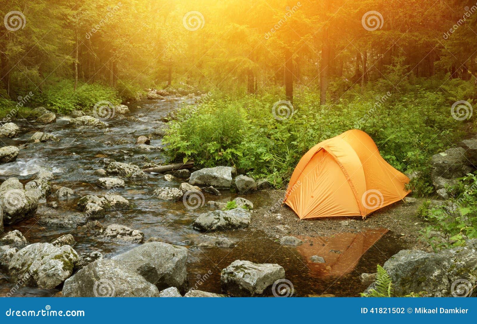Het kamperen in het bos