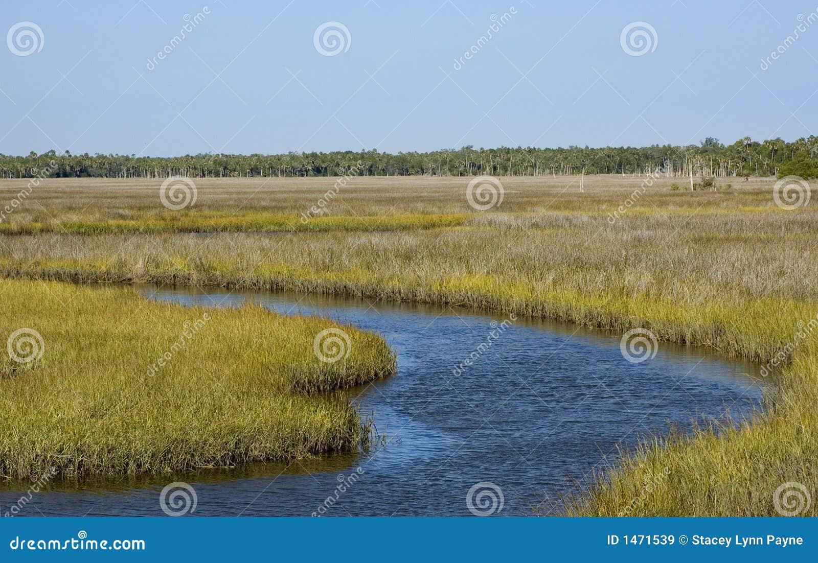 Het Kanaal van Airboat in de Vlakten van het Gras