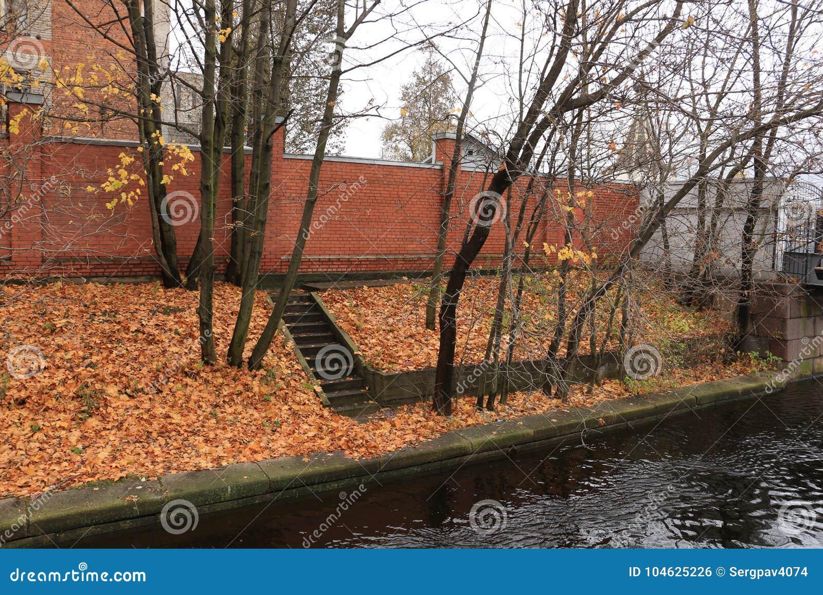 Download Het Kanaal Van De De Herfstdijk Stock Foto - Afbeelding bestaande uit gazon, licht: 104625226
