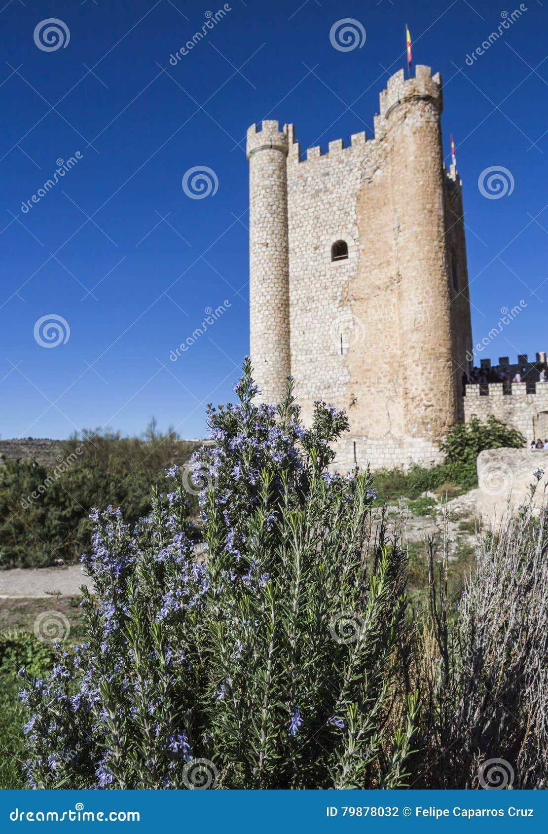 Het kasteel van Almohad-oorsprong van eeuw XII, neemt in Alcala van t