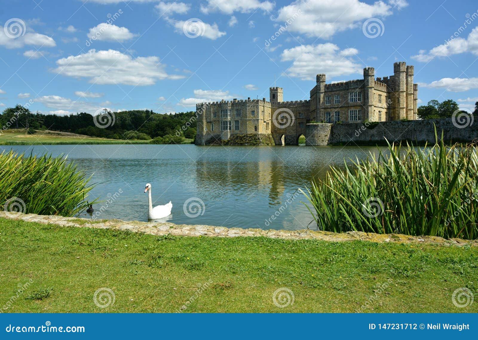 Het kasteel van Leeds Zwaan op de gracht Kent het UK