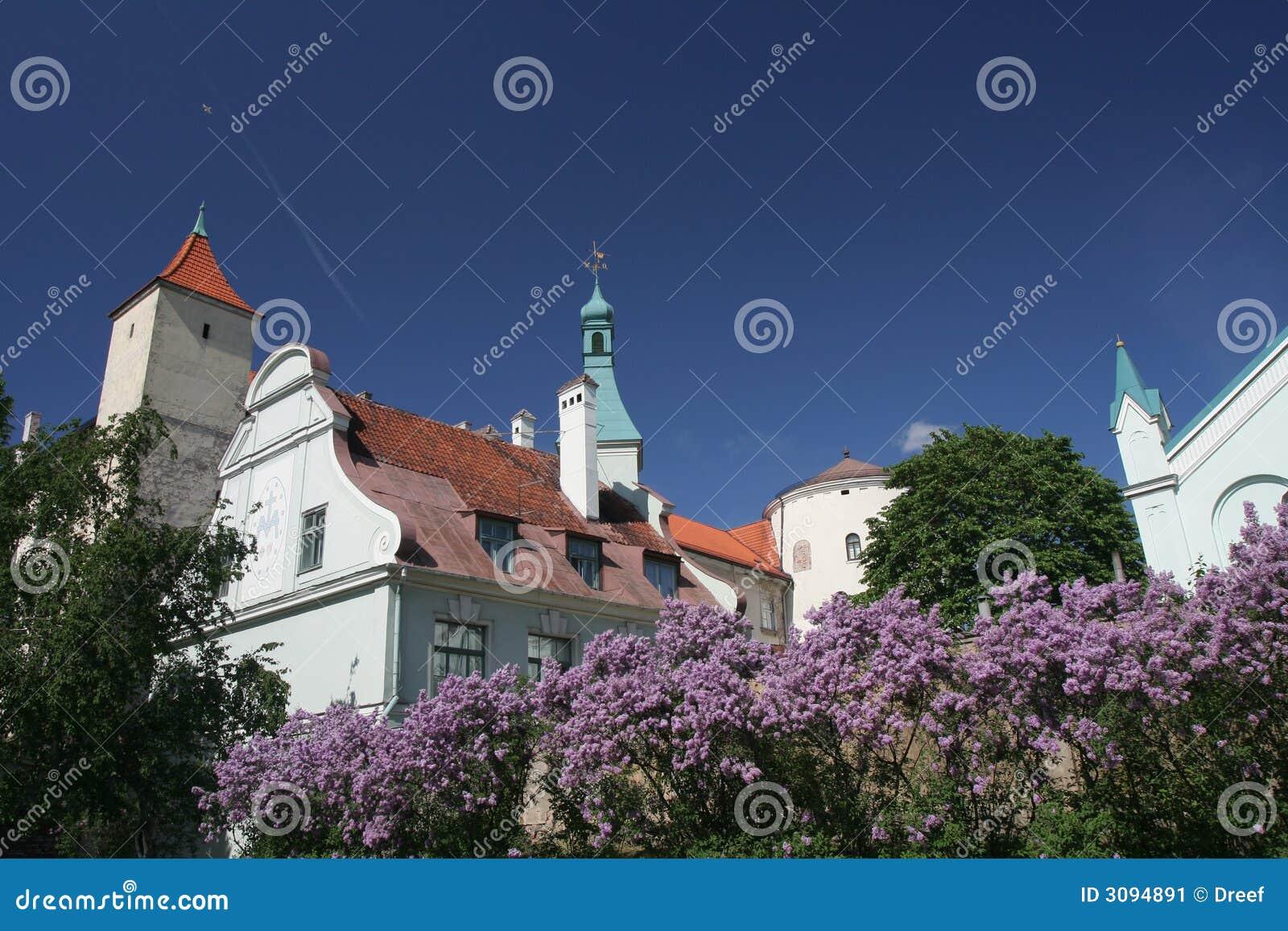 Het kasteel van Riga