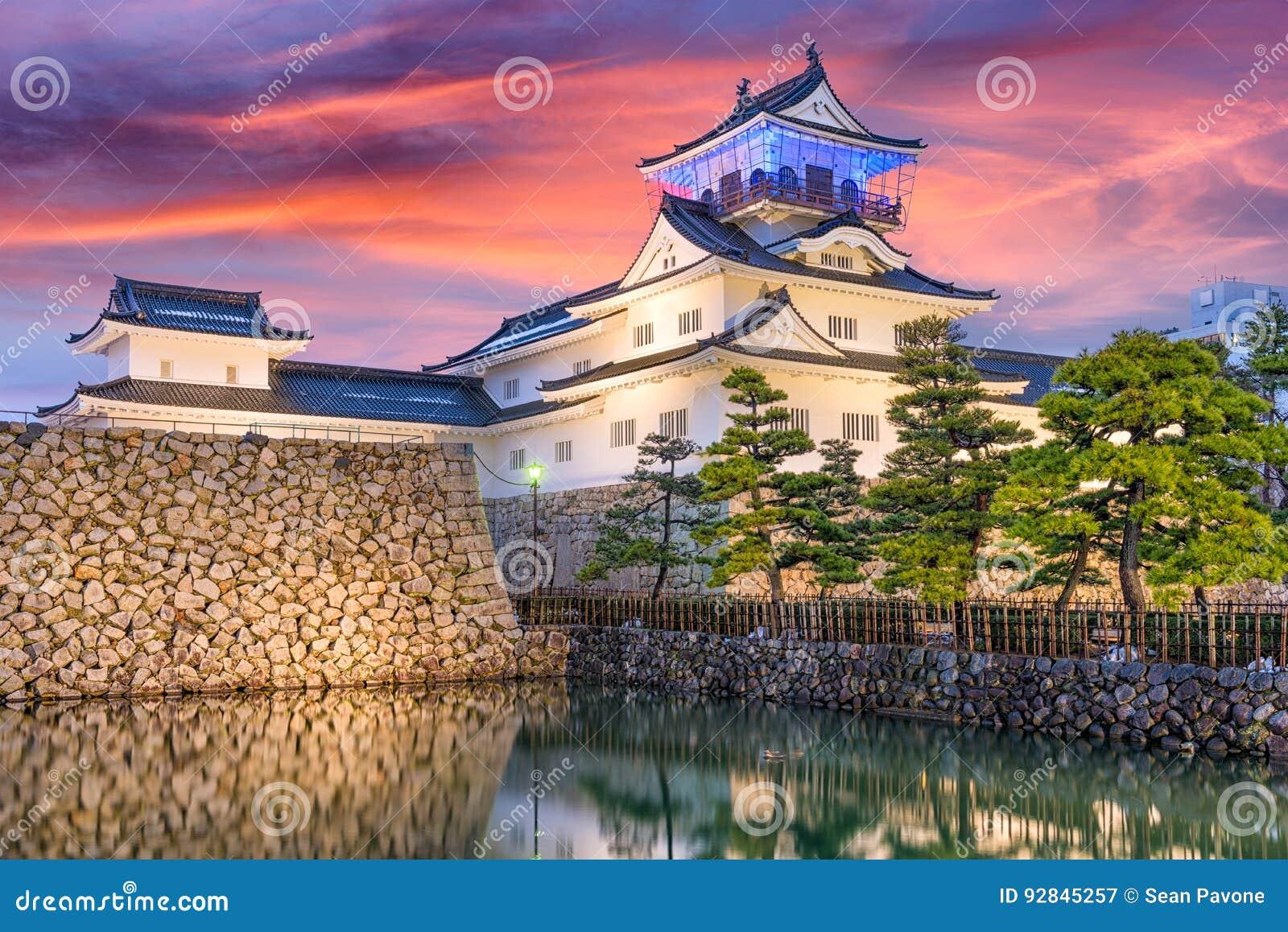 Het Kasteel van Toyama, Japan