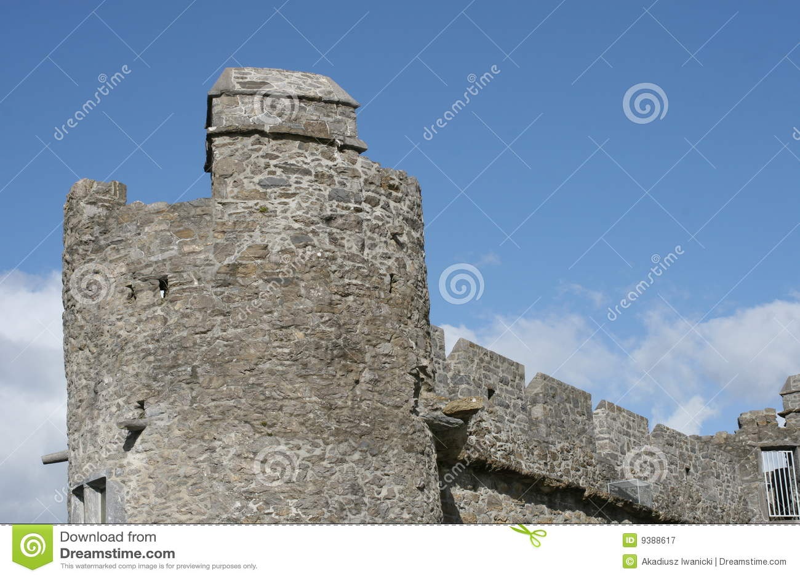 Het kasteeldetail van Ross