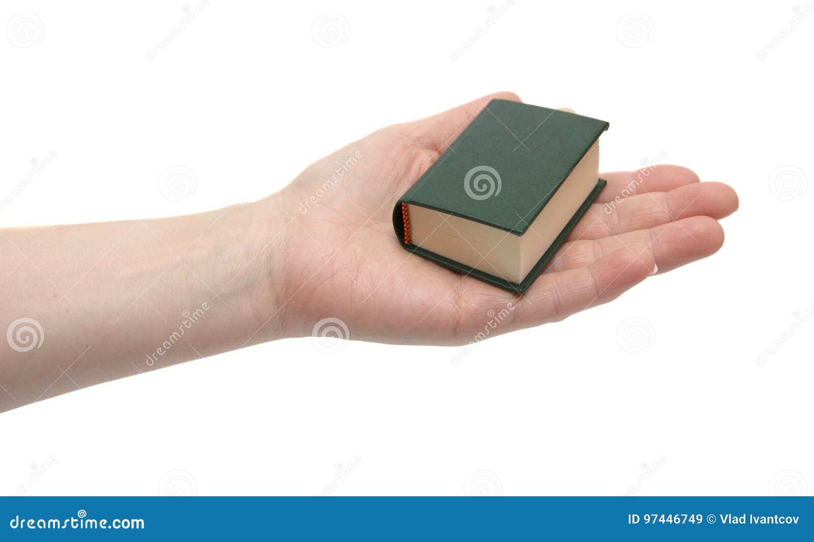 Het kleine boek in een hand
