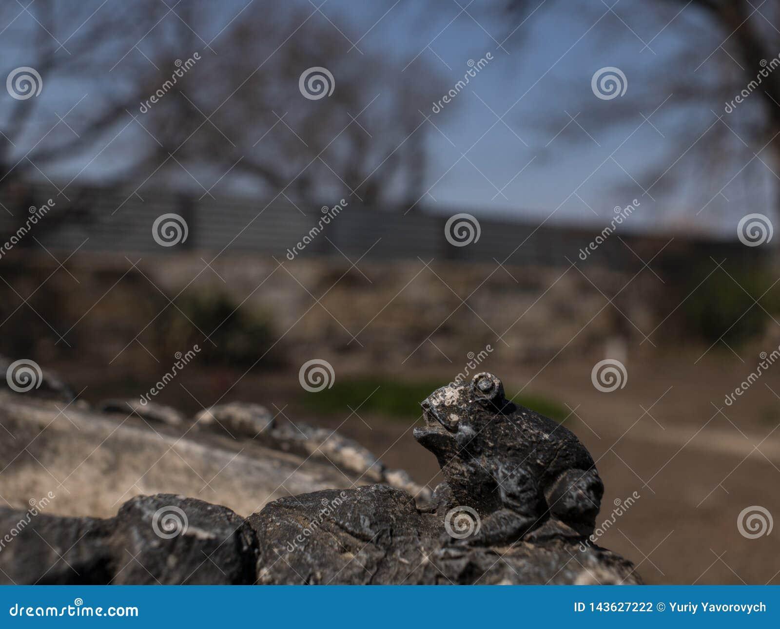 Het kleine cijfer van de kikkersteen openlucht