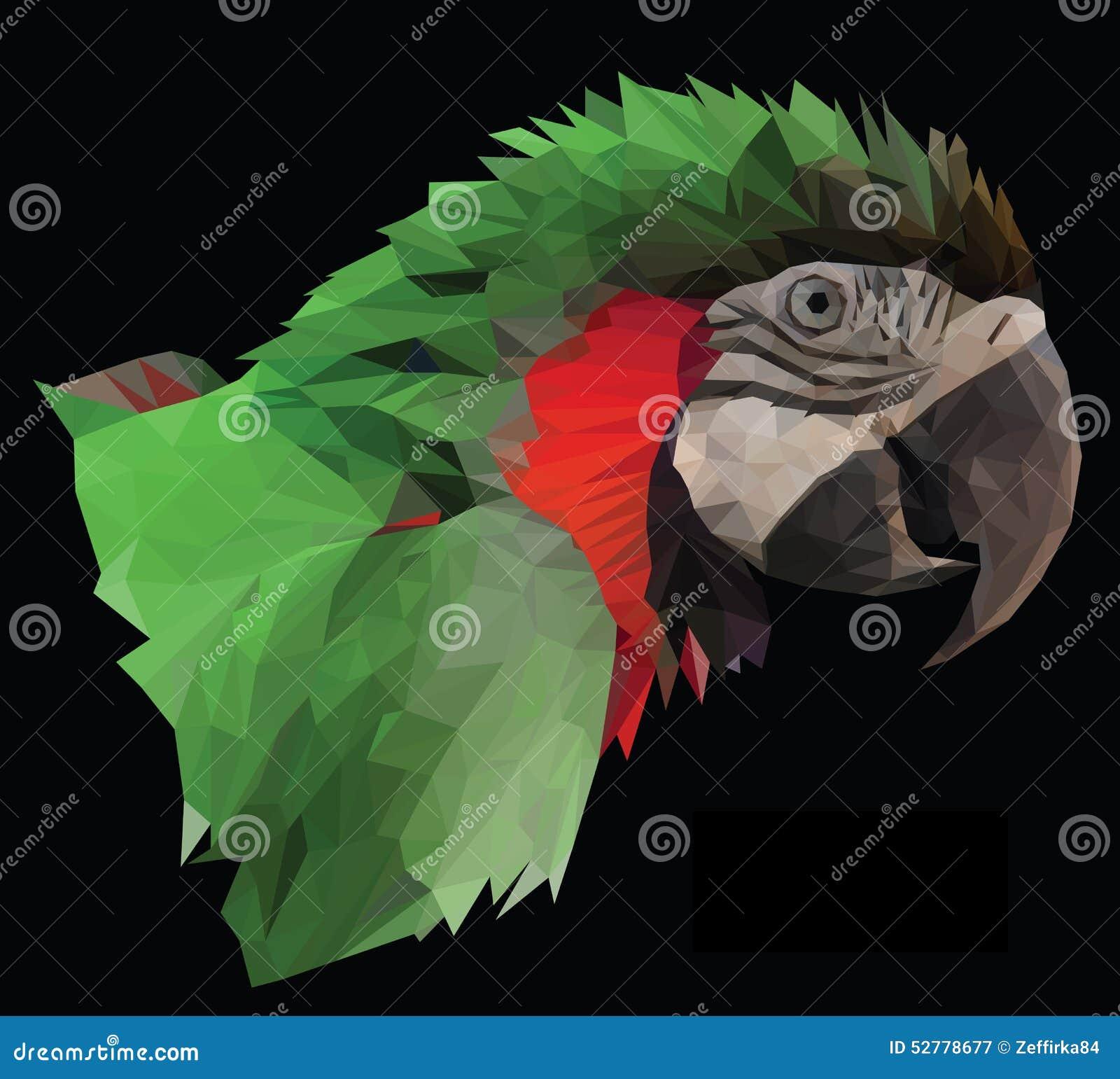 Het kleurrijke hoofd van de arapapegaai op zwarte achtergrond