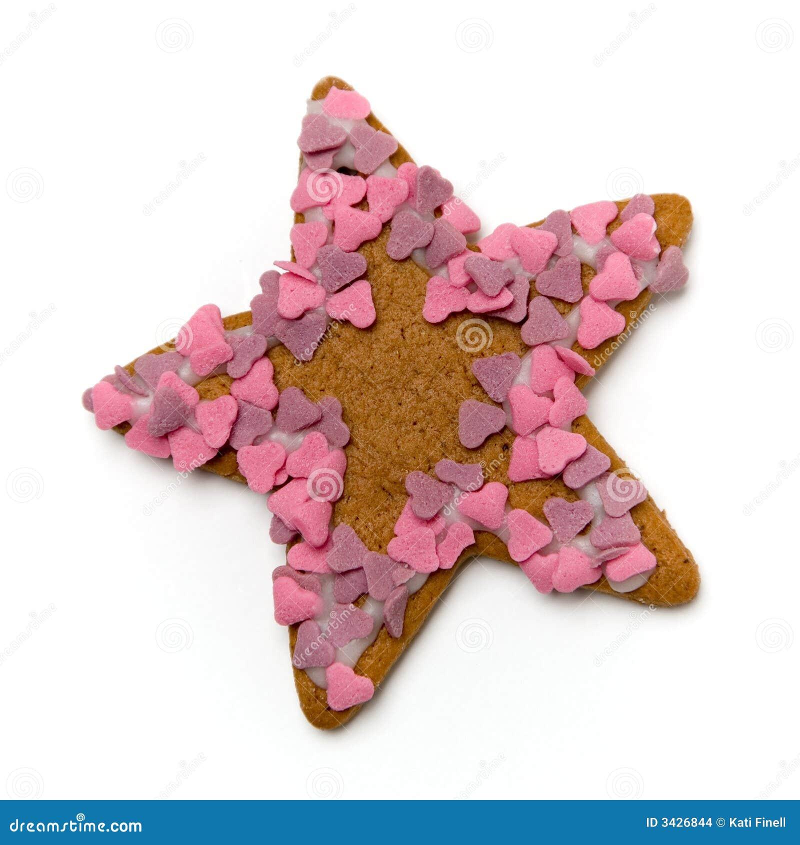 Het koekje van de peperkoek