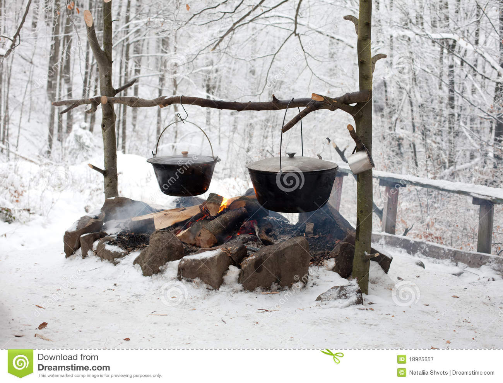 Het Koken van het kampvuur