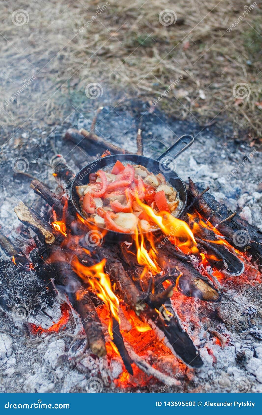 Het koken van witte paddestoelen met tomaten in een pan op een brand in het de lentebos