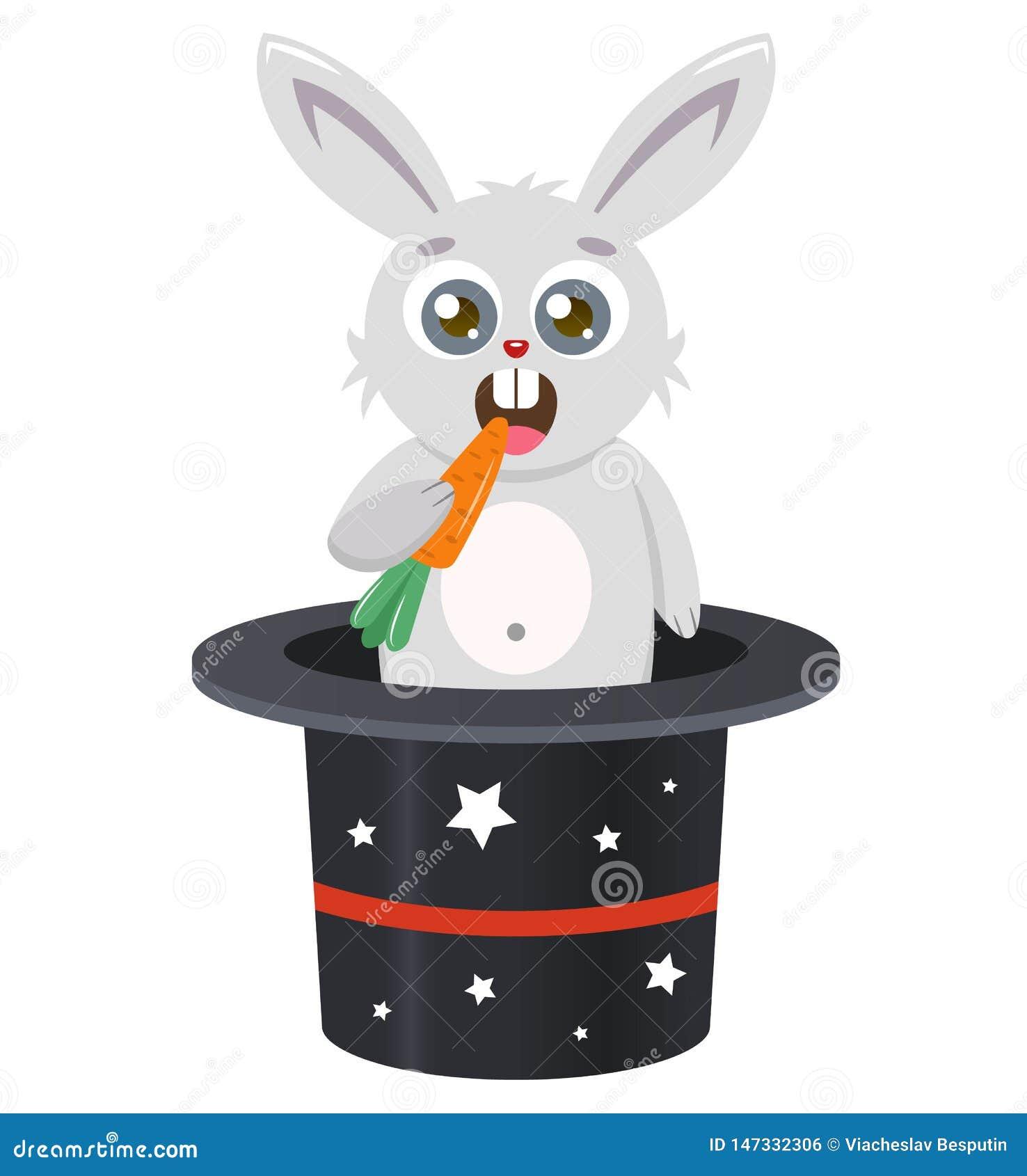 Het konijn komt uit de hoed te voorschijn