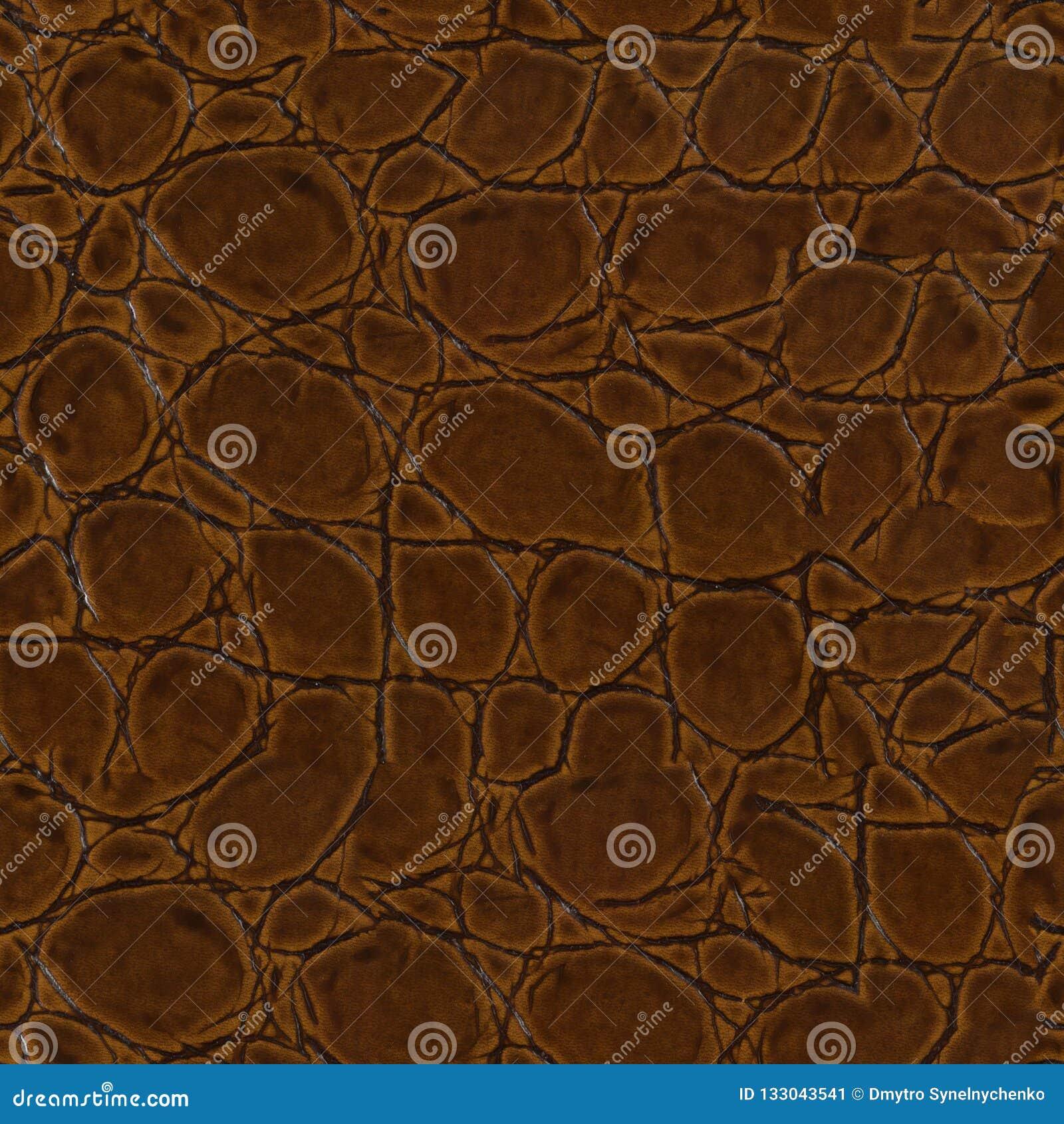 Het krokodilleer, kan als achtergrond gebruiken De naadloze vierkante textuur, betegelt klaar