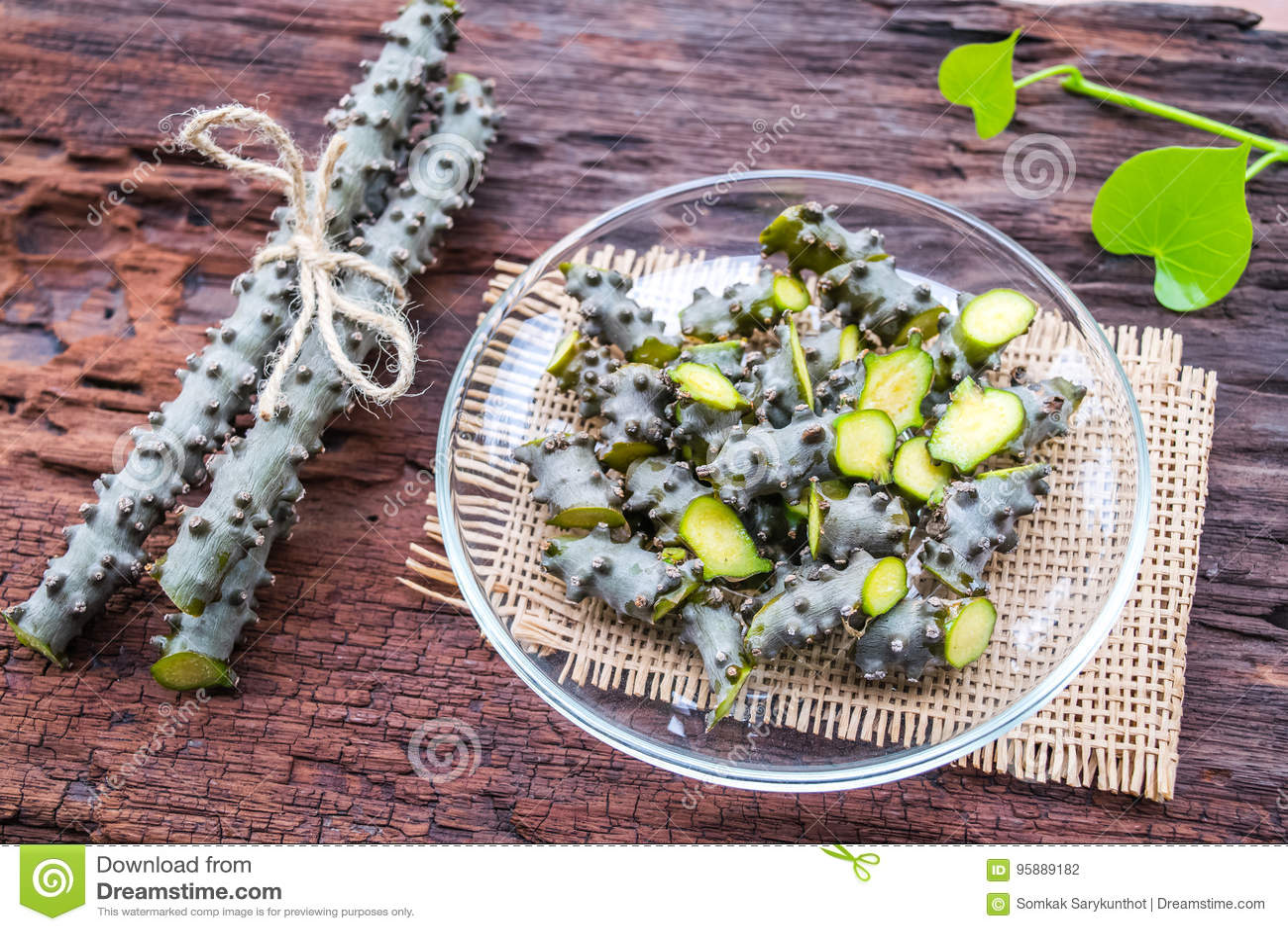 Het kruid van Tinosporacordifolia