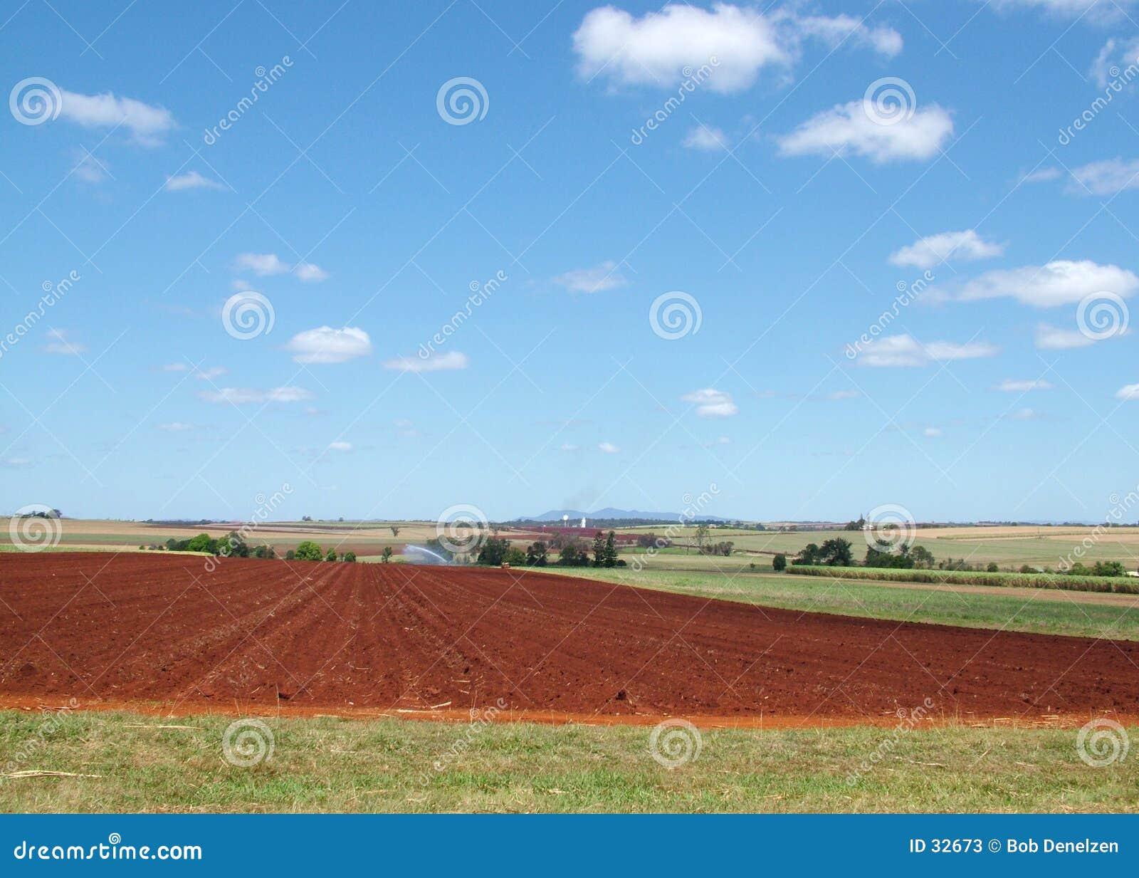 Het land van het landbouwbedrijf