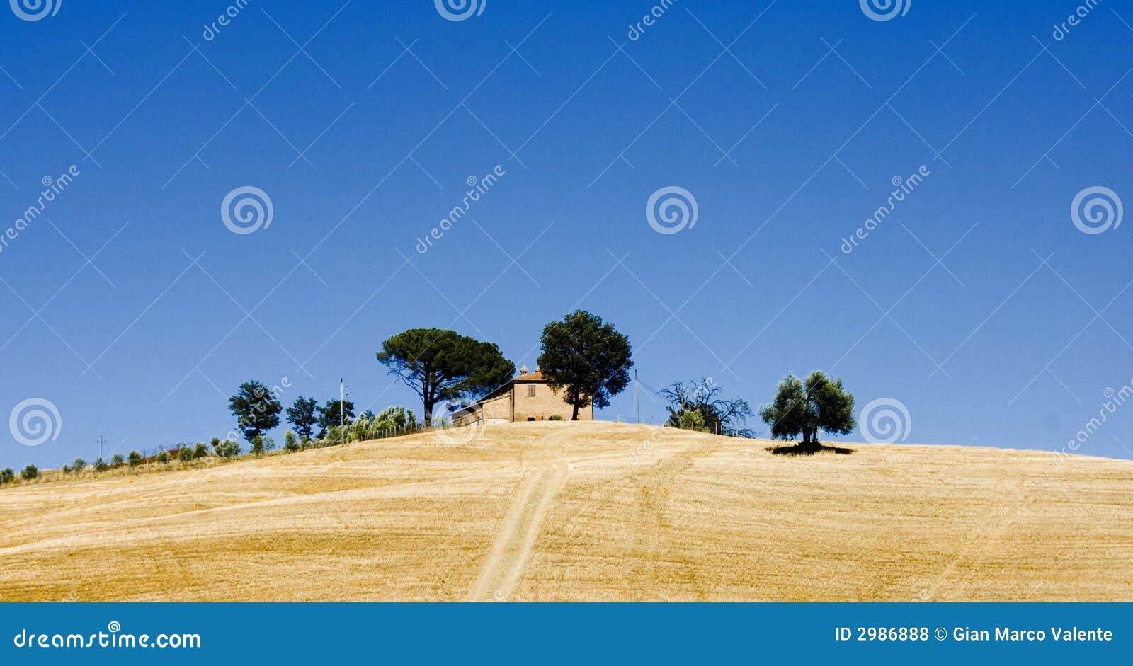 Het landbouwbedrijf Toscanië Italië van de heuveltop