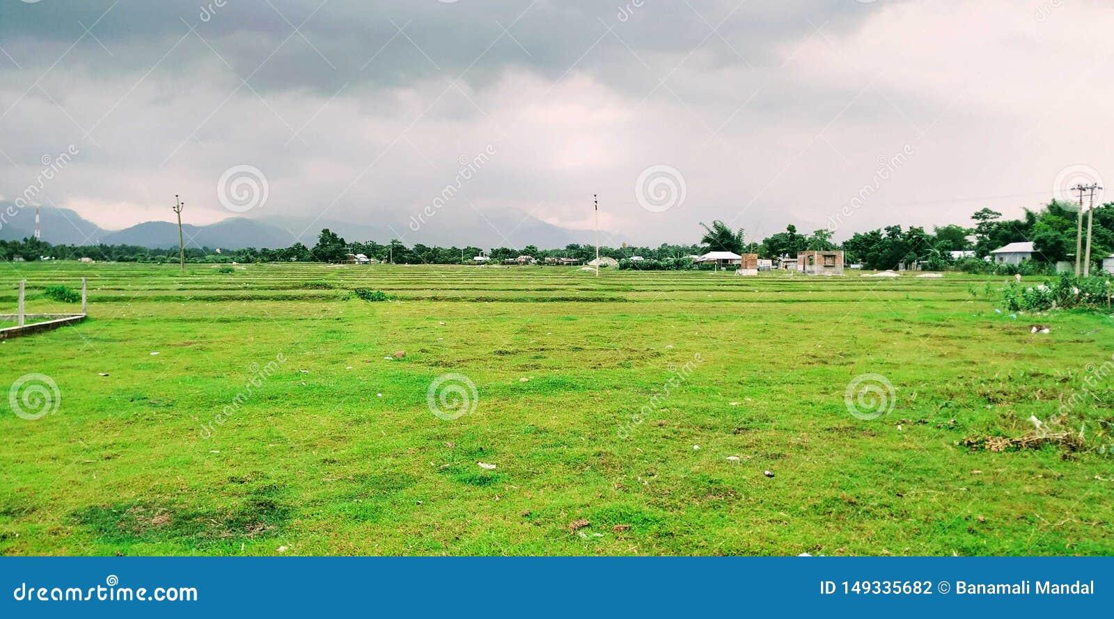 Het landelijke groene dorp van de Weergevenaard