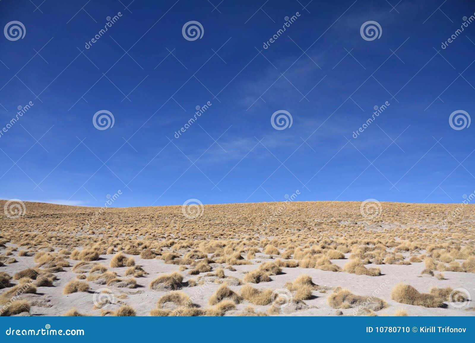 Het landschap van Altiplano