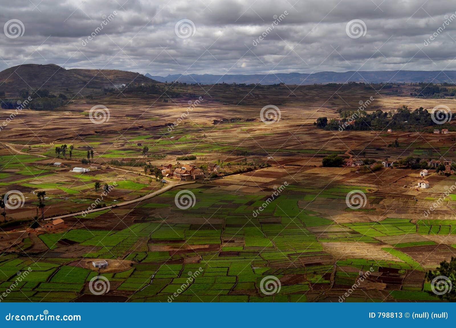Het landschap van Betsileo in Madagascar