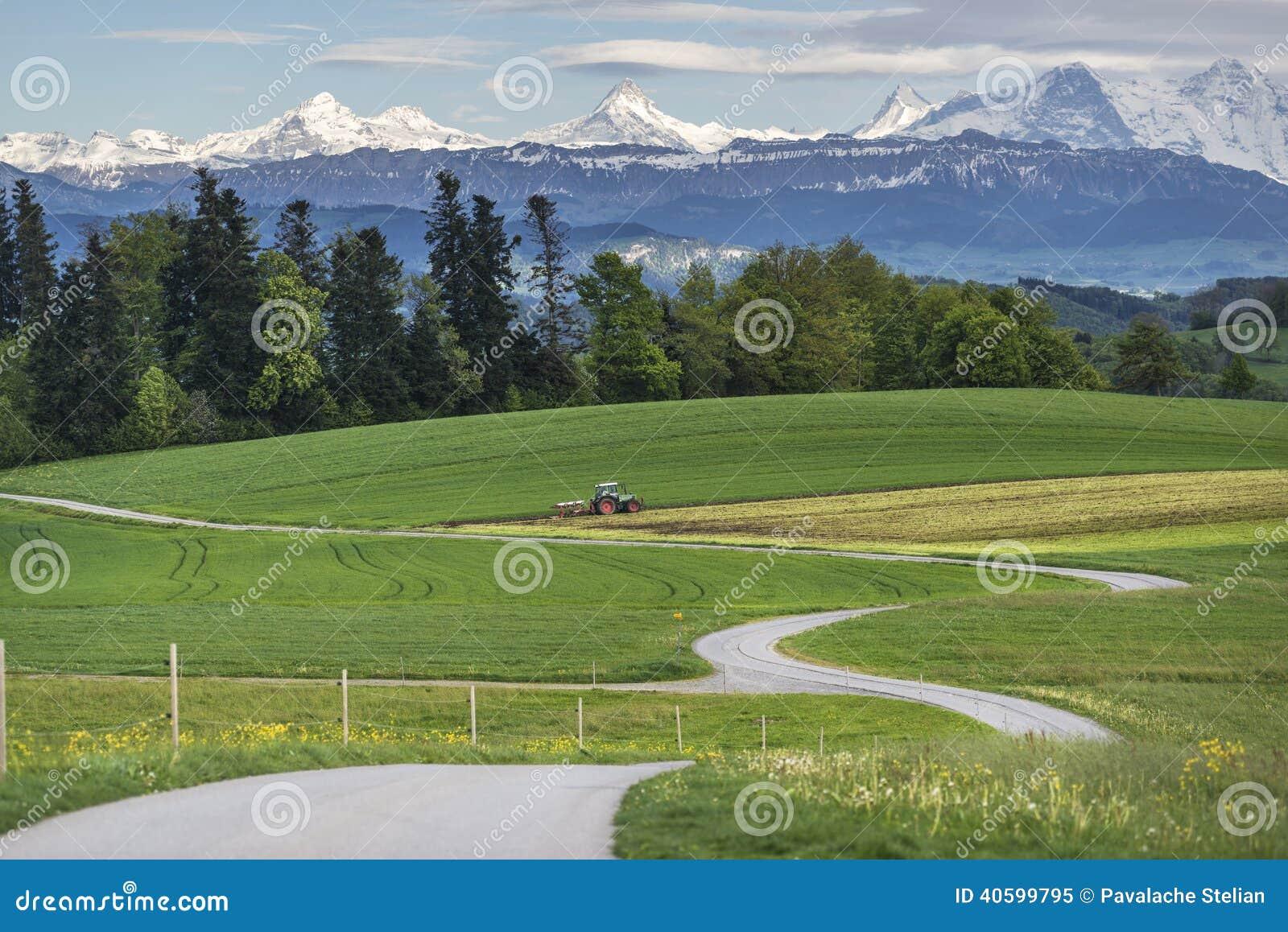 Het landschap van de berg met groen gebied
