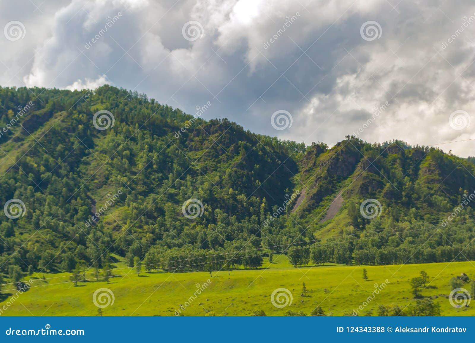 Het landschap van de rand behandelde met groene bomen en bekijkt valle